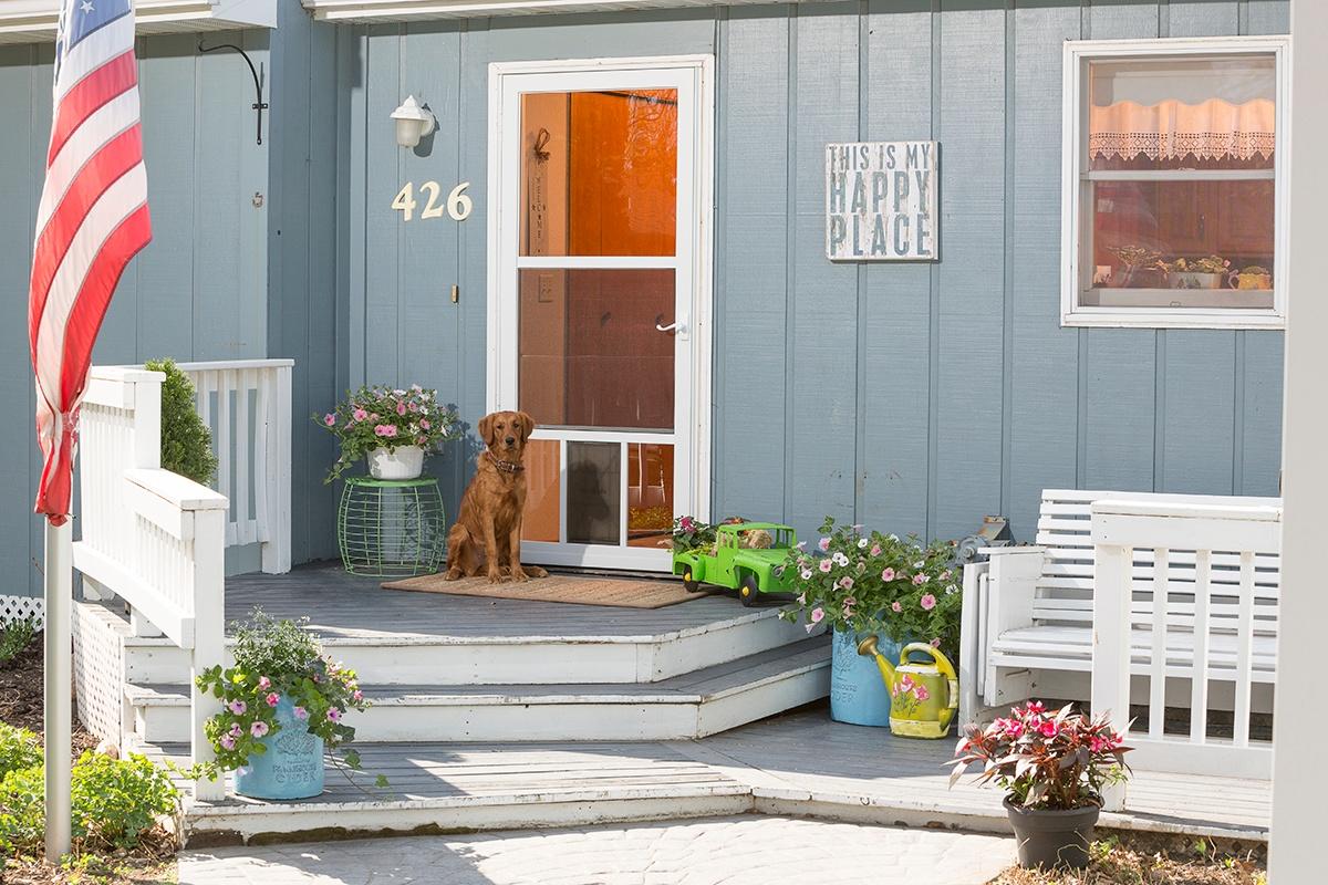 Larson Pet Storm Doors